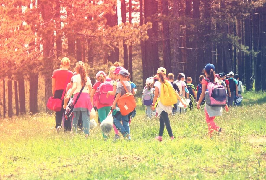 Znaczenie wycieczek i spacerów w rozwoju dziecka w wieku przedszkolnym