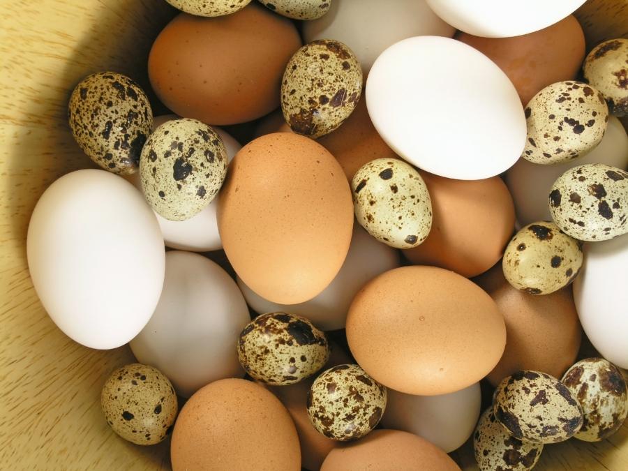 Jak gotować i piec bez użycia jajek?