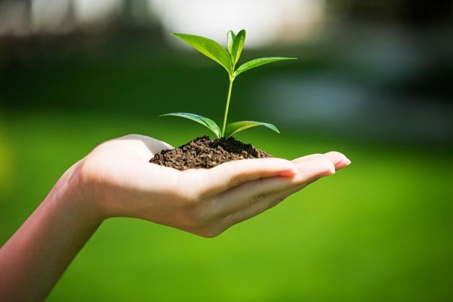 Jak być bardziej eko w 10 prostych krokach